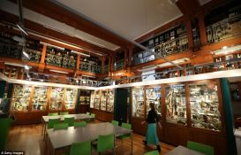 9. Grant Museum of zoology