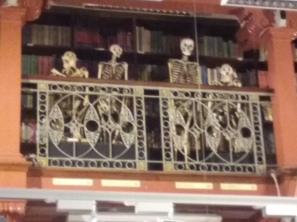Skeletons overlooking